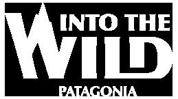 Into the Wild Patagonia